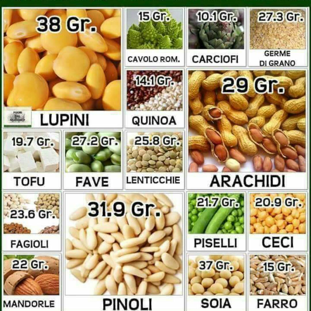 quali alimenti sono ricchi di proteine